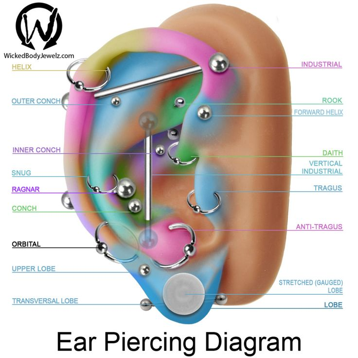 Ear Piercings Guide: 17 Types Explained (Pain Level, Price, Photo)